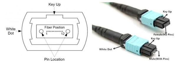 ساختار کانکتور MPO/MTP